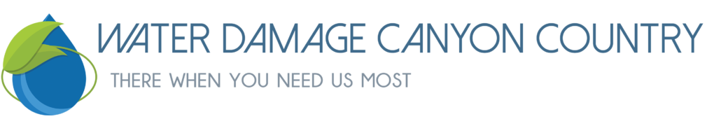 Water Damage Canyon Country